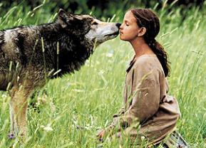 Kim Und Die Wölfe Stream