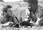 Tony Curtis und Sidney Poitier müssen lernen, miteinander auszukommen