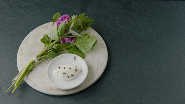 Kräuterbouquet und Dip aus schwarzen Ameisen.