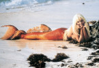 Ein aufregendes Strandgut: Daryl Hannah als Nixe