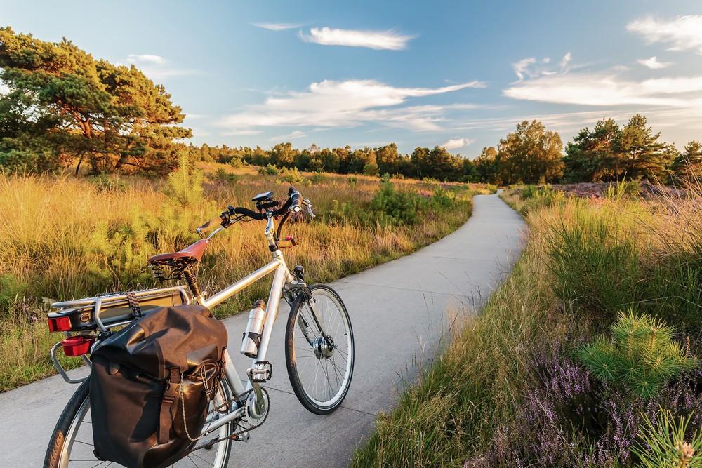 fahrrad oder e bike wie sie sich f r das richtige modell entscheiden. Black Bedroom Furniture Sets. Home Design Ideas