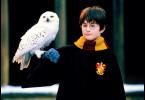 Das nenne ich Flugpost! Daniel Radcliffe als Harry  Potter