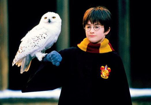 Harry Potter Und Der Stein Der Weisen Trailer Kritik Bilder Und