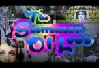 Der Sommer des Jahres 1967 ist als Summer of Love berühmt geworden. Die Hippie-Bewegung feierte damals ausgehend von San Francisco ihren Höhepunkt.