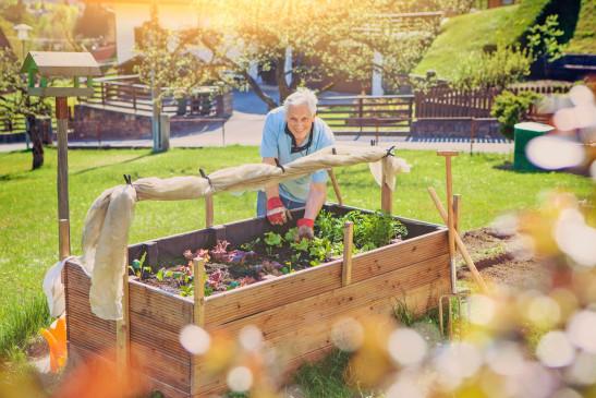 Tipps Fur Hochbeet Und Co Pflanzenpracht Auf Kleinem Raum