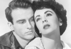 George Eastman (Montgomery Clift) ist in Angela Vickers (Elizabeth Taylor) verliebt. Doch nicht nur in sie, auch in ihre glamouröse und aufregende Welt.