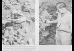 Seine SS-Offizierskappe diente dem Archäologen Gustav Riek als beliebtes Fotomotiv.
