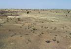 Fortschreitende Wüstenbildung in der Sahelzone - Klimaflucht, weil die Lebensgrundlage fehlt.