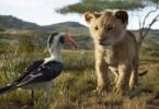 Zazu hat alle Flügel voll zu tun, um auf den wagemutigen Simba aufzupassen.