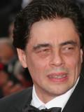 Hat die Wandlungsfähigkeit eines Chamäleons: Benicio Del Toro.