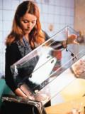 So, ihr Schaben, ab ins Täschchen! Esther Schweins führt Übles im Schilde