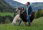Francisca (Patricia Meeden) und Uli Dobner (Daniel Fritz) haben sich mit ihrer kleinen Lamawanderung eine Auszeit genommen und genießen die Zeit zu zweit.