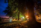 """""""Wilde Nächte - Wenn die Tiere erwachen"""", Wenn die Dunkelheit einbricht und die Menschen schlafen, erwachen nachtaktive Tiere wie Füchse, Marder und uhus erst und trauen sich aus ihren Verstecken. Der Tierfilmer Uwe Müller zeigt dank modernster Nachtfilm-Technik die mit perfekten Sinnen ausgestatteten Tiere und bringt für den Zuschauer Licht ins Dunkel der geheimnisvollen Welt der Nachtschwärmer.  SENDUNG: ORF3 - DI - 03.12.2019 - 18:30 UHR. - Veroeffentlichung fuer Pressezwecke honorarfrei ausschliesslich im Zusammenhang mit oben genannter Sendung oder Veranstaltung des ORF bei Urhebernennung."""