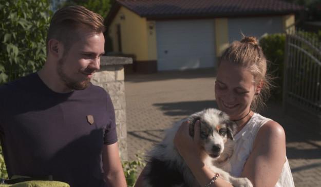 Rtl Mediathek Martin Rutter Die Welpen Kommen Im Stream